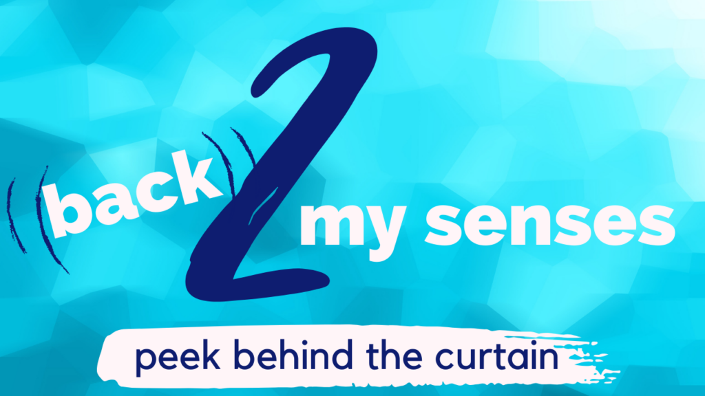 back 2 my senses your tube channel graphic cover